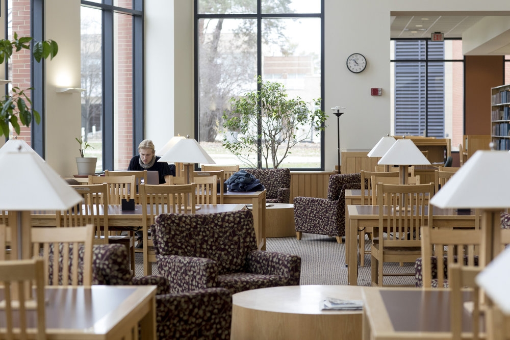 Student studying in the Science Library.